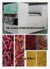 Chili CCD Color Sorter