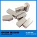 Neodymium Magnets/Neodym Magnets/Rare earth Magnets