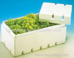 eps foam mold for packing vegetable boxes and fruits on eps machine