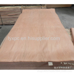 Natural wood veneer type and rotary cut plywood face veneer