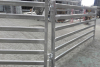 5 Rails Oval Tube Sheep Yard Panel