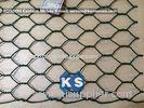 Professional PVC Gabions Wire Mesh Box and Basket for Chicken Hexagonal Wire Netting