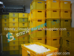 China Snow Amber 10T-20T competitive tube ice machine