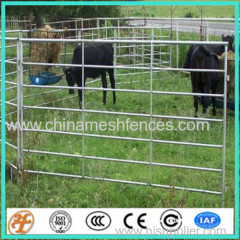 galvanized round pen horse panels
