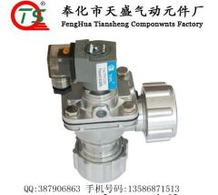 DN25DD Right Angle Solenoid Pulse valves