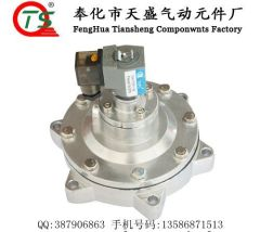DN50 Submerged Solenoid Pulse Valve