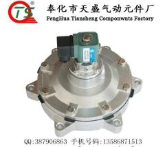 DN62 Submerged Solenoid Pulse Valve