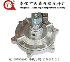 "DN76(3"")Submerged Solenoid Pulse Valve"