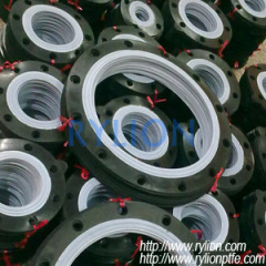 PTFE and rubber gasket