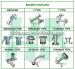 bauer type coupling series