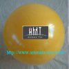 Animate Fitness ball-gym balls