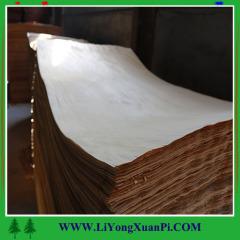 China factory plywood wood veneer red oak veneer with cheap price