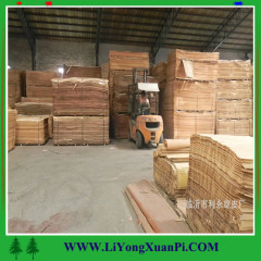 Cheap wood veneer/face veneer supplier / face veneeer for plywood Sabina Virginiana Veneers