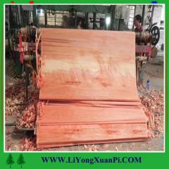 BP/MR/ Melamine Commerical Bingtangor veneeer Plywood Made in China