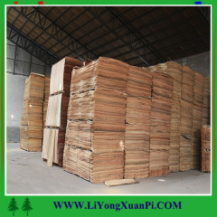 africa mahogany crotch veneer