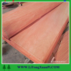 Linyi Bingtangor veneeer plywood sheet