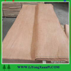linyi cheap price rotary cut plb veneer/gurjan face veneer/natural wood veneer/keruing face veneeer with good color
