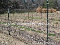 Steel Pole for Farm Cattle Fence