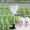 Outdoor Garden Solar Light