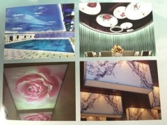 Sell MSD Stretch Ceiling Film from China for wallpaper