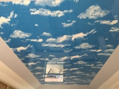 Sell MSD Pvc stretch ceiling film for ceiling/wall decoration