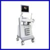 Color Digital Trolley Ultrasound System