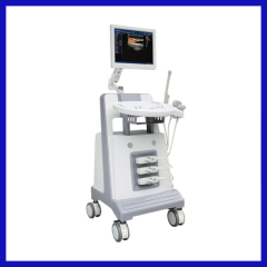 Digital Trolley Ultrasound System