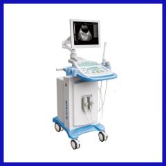 Digital Trolley Ultrasonic scanner