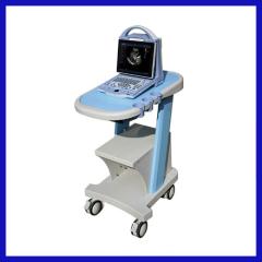 Colour doppler ultrasound machines