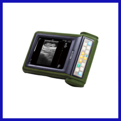 Portable laptop handheld Veterinary Ultrasound
