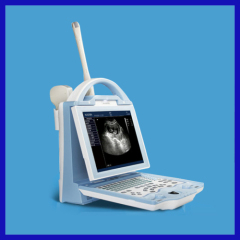 color veterinary ultrasound machine