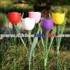 Plastic Solar Christmas Yard Light Tulip