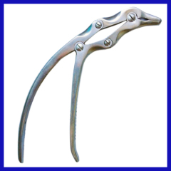 Bone Holding Forceps with Guide