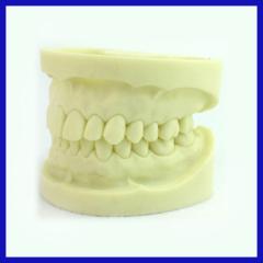 3-layer dental acrylic teeth