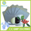 China manufacturer of Natural effect burn fat slim patch for weight loss