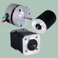 Custom 12V 24V 48V Electric DC Brushless Motor