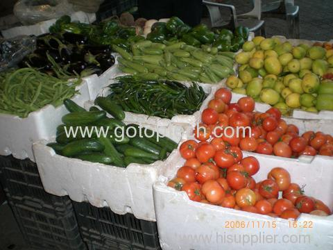 EPS vegetable box packaging mould by eps shape moulding machine polystyrene packaging mould