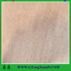 Natrual Black Walnut Veneer Faced Plywood