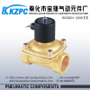 High Quality 2 /2 way material solenoid valve