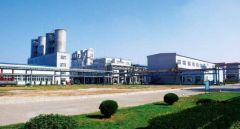 Shandong Baolai Silicon Industry Co., Ltd.