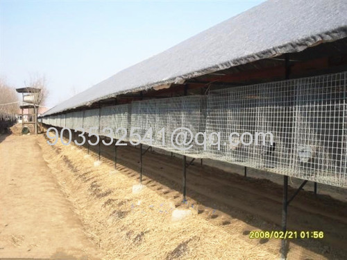 New arrival stainless steel welded mesh mink cage/hot dipped galvanized mink cage/mink wire mesh cage(Anping Manufcturer