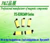 EDR2609 Series Lighting transformer