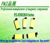 EDR2810 Series Lighting transformer