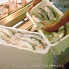 Water/Heat resistant EPS foam fish box mold with shock-absorbing characteristics made in China
