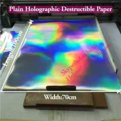 security plain hologram destructible vinyl sticker sheets