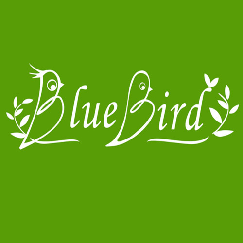 Bluebird Garden Tools Co.,Ltd.
