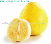 China Supplier Grapefruit Seed Extract powder naringin for Antioxidant