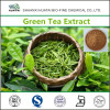 Green Tea Extract Powder for Weight Loss
