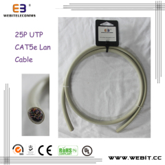 25P CAT5e UTP lan cable
