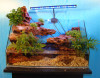 aquarium landscaping home and office